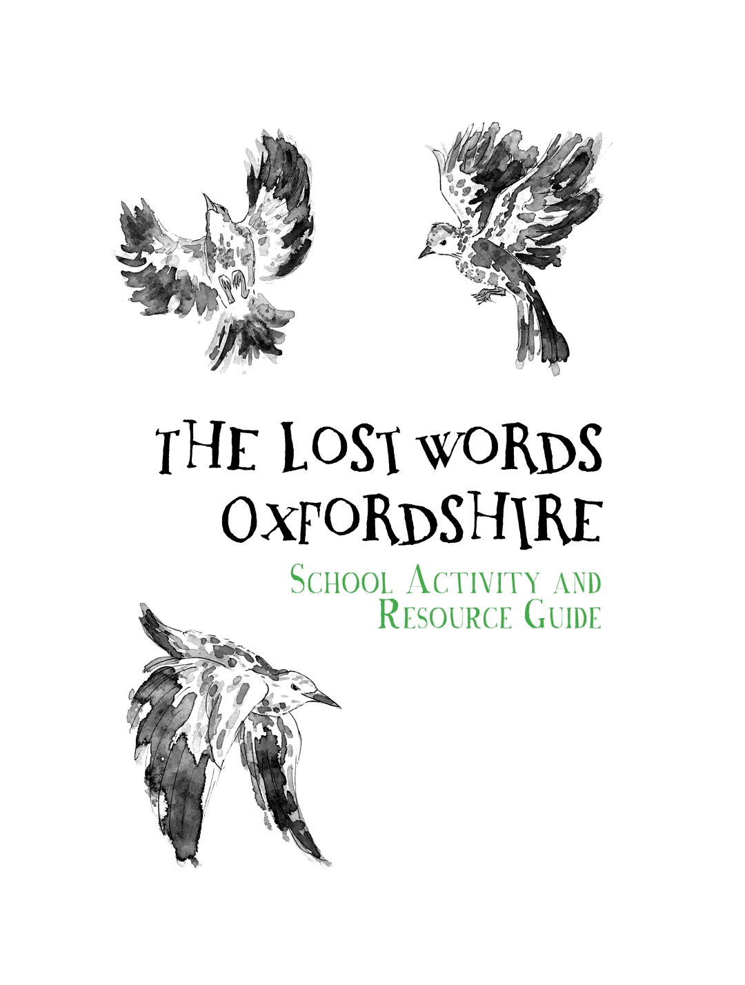 lost Words resource pack cover only